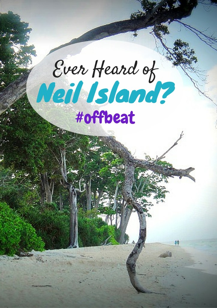 Neil Island - A paradise island which is many hours away from the main land with empty soft sand beaches, extremely blue water, no cell phone connectivity, amazing seafood curries, simple village life, extremely polite (and sweet) people and unbelievably affordable