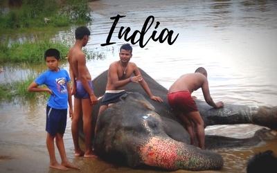 India Travel Blog posts