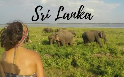 Sri Lanka Travel Blog Posts