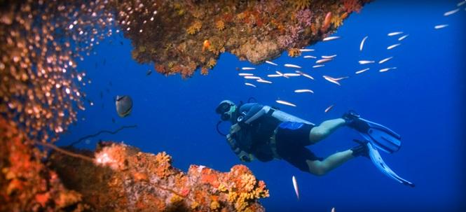 Barefoot Scuba (Dive Andamans)