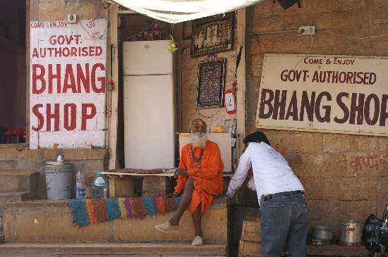 Bhang Lassi in Jaiselmer, Jaisalmer, Rajasthan