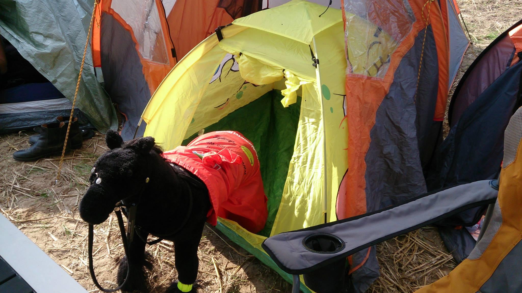 Henrietta in her tent