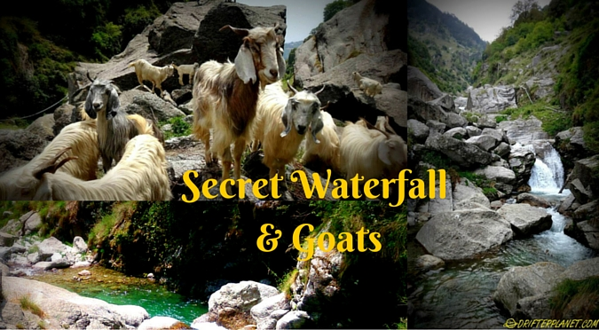 Gallu – of chai shops, secret waterfall and goats