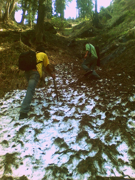 A little snow patch on our trek to Kheerganga