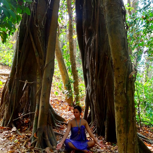 Chilling Under a Massive Tree on Lovers Island, Ngwe Saung