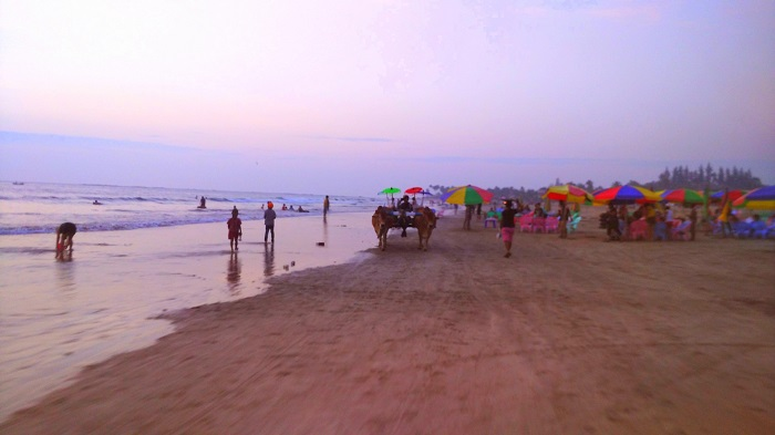 Ngwe Saung Beach After Sunset with Bullock Carts and Colorful Umbrellas