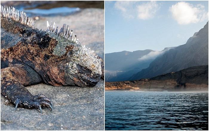 Galápagos Islands, Ecuador - 50 Surreal Travel Destinations