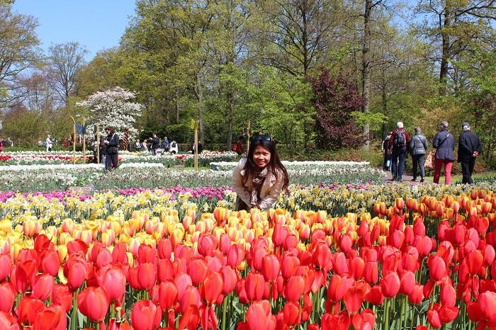 Tulip Fields, Netherlands - 50 Surreal Travel Destinations