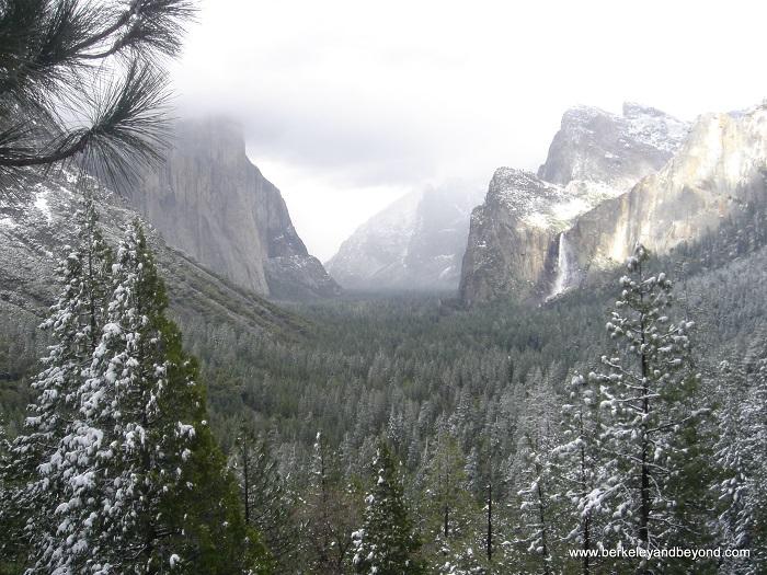 Yosemite National Park, California - 50 Surreal Travel Destinations
