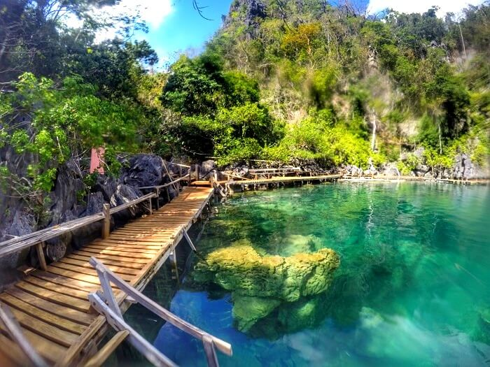 Kayangan Lake, Coron, Palawan - Asia's Cleanest Lake