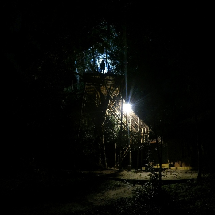 Listening to the sounds of forest at night in our tree house in Sri Lanka