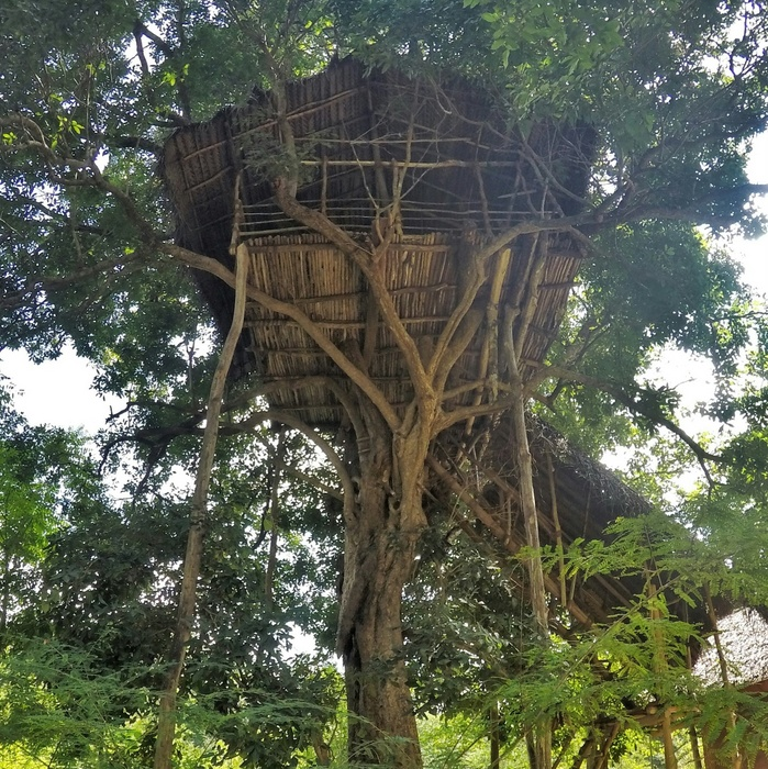 Our tree house in Sri Lanka that was booked through Glamping Hub