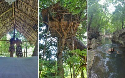Sleeping in a Tree House in Sri Lanka near Sigiriya [in the Forest]
