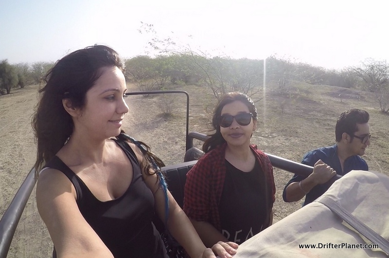 Jeep Safari at Gajner Sanctuary, Bikaner, Rajasthan