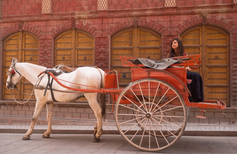 Merchant's Trail in Bikaner on a horse carriage