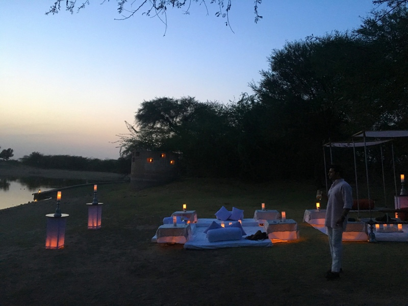 Our beautiful set up for the evening in Darbari, Bikaner, Rajasthan