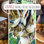 Strange Things to Eat in Iceland - Drifter Planet
