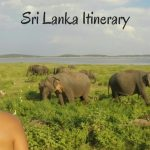 Sri Lanka Itinerary - Explore Sri Lanka in a Month
