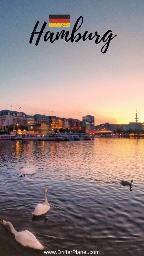 Sunset By Alster Lake With Swans - Things to do in Hamburg, Germany
