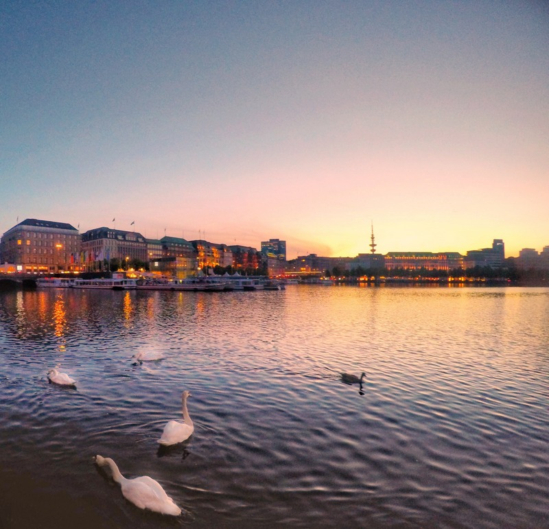 Sunset By Alster Lake With Swans, Hamburg, Germany