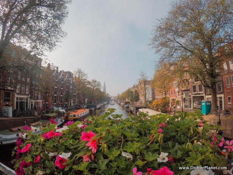 View from the Bridge in Amsterdam Flowers Canal Narrow Buildings in Jordaan