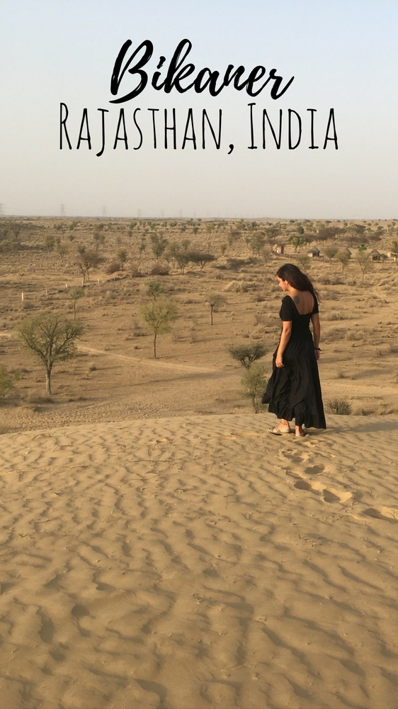 Things to do in Bikaner, Rajasthan