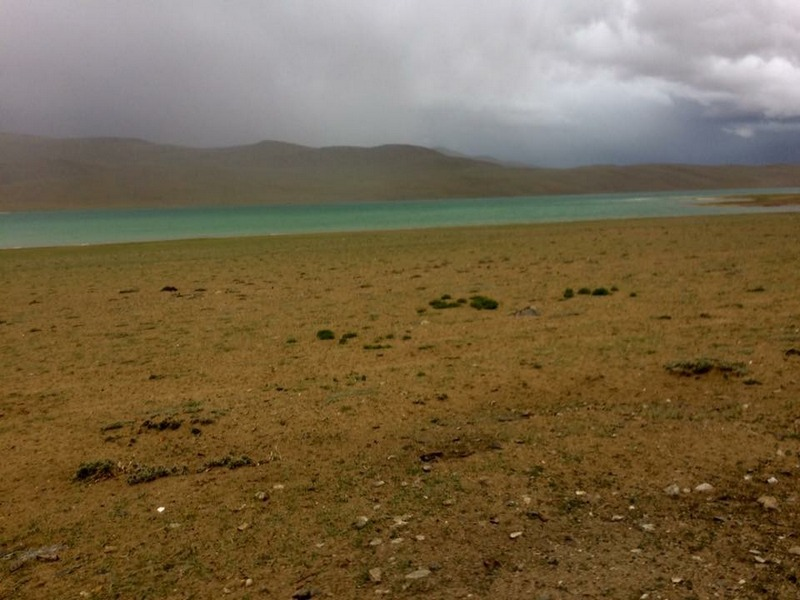 Tso Moriri - Ladakh Road Trip