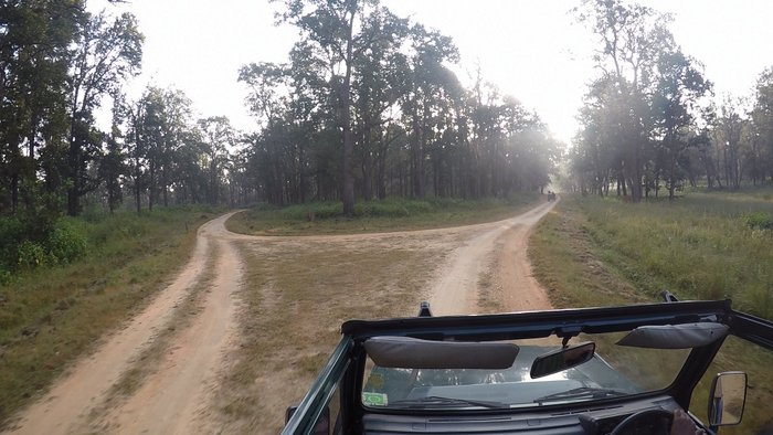 Kanha National Park jeep route