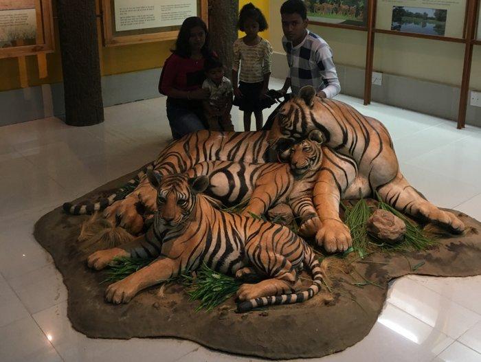 An adorable family inside Kanha Museum, Madhya Pradesh