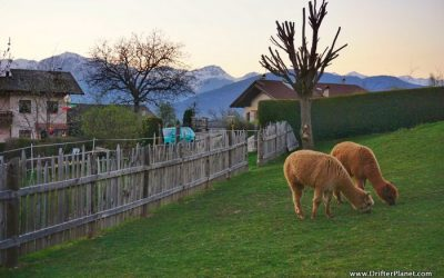 Val di Non – the Romantic Valley of Castles, Apples and Brenta Dolomites in Italy