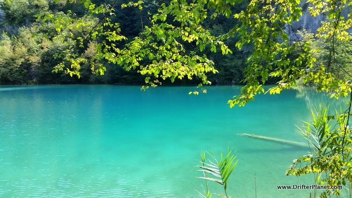 The super clear water of Plitvice Lakes in Croatia