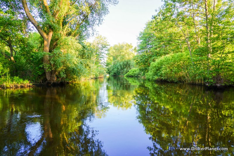 Danube Delta, Romania - Forest and Water Canals