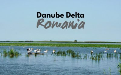 Danube Delta in Romania – Travel Guide to Eastern Europe's SECRET Paradise