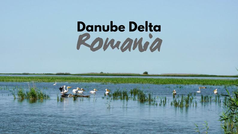 Danube Delta in Romania - Travel Guide to Eastern Europe's SECRET Paradise  | Drifter Planet