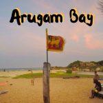 Arugam Bay, Sri Lanka - Travel Guide + Things to do + Video