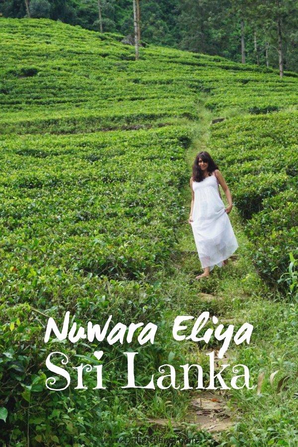 Nuwara Eliya on Kandy to Ella train route - Sri Lanka Train Itinerary
