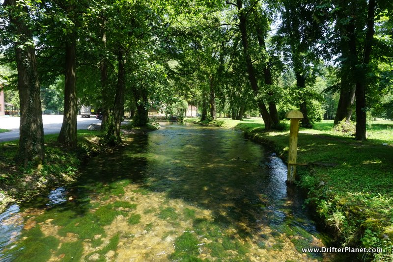 River Vrelo - the Shortest river - Tara National Park, Serbia