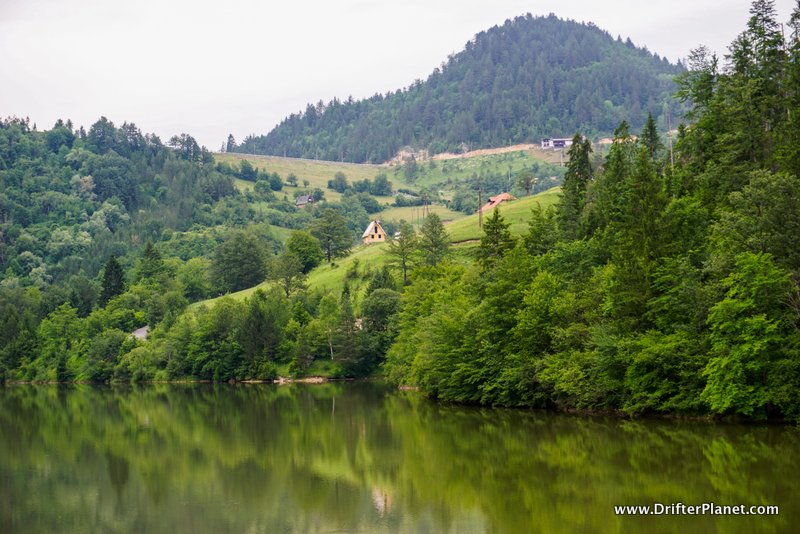 Tara National Park is heavily forested and is called the Lungs of Serbia