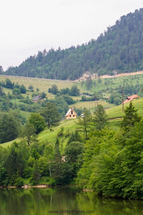 Green Hills in Tara National Park - the lungs of Serbia