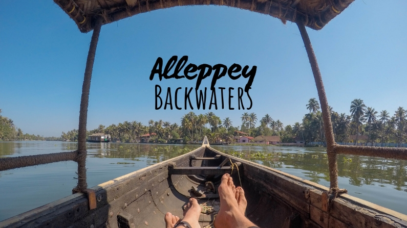 Why Canoeing Through Alleppey Backwaters is Better than a Houseboat [Kerala]