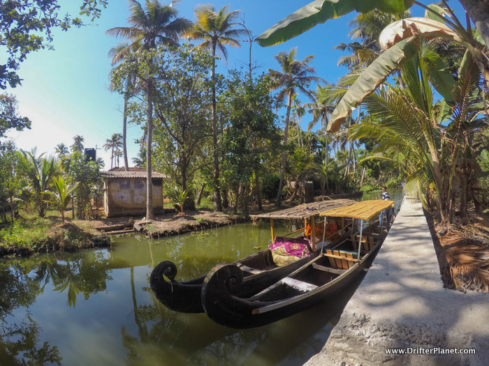 Our wooden canoes for the day Shikaras Alleppey Backwaters