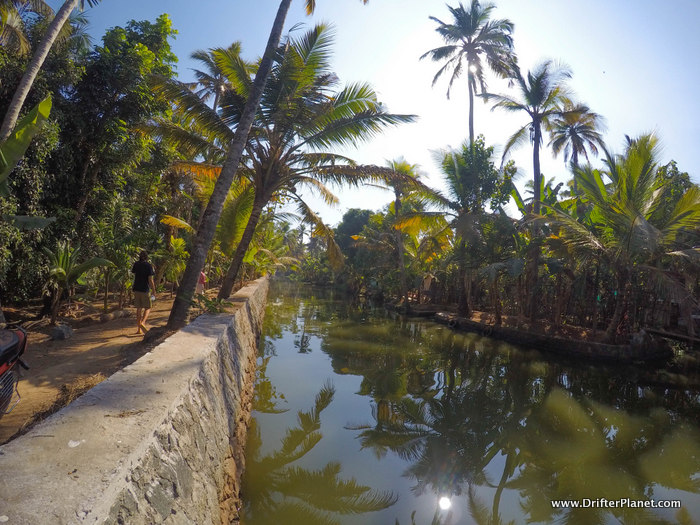 Walking along the canals in Kuttanand area, Alleppey Backwaters
