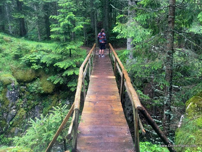 One of the many little Bridges inside Durmitor National Park, Montenegro