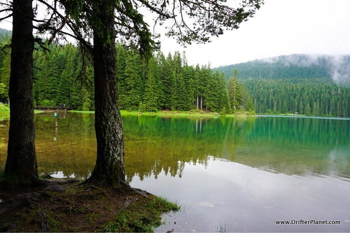 Walking along the Black Lake in Durmitor National Park