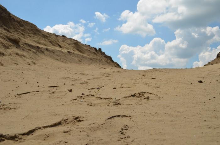 Deliblato Sands, Serbia – the Forgotten Nature Reserve & Europe's Last Desert