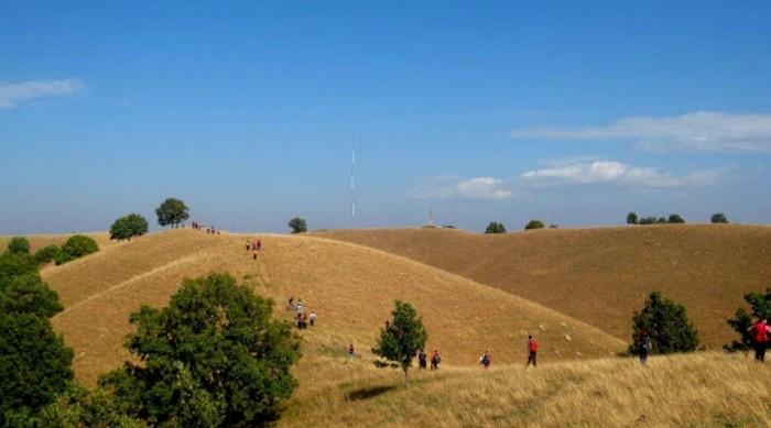 Deliblato Hills - Deliblato Sands, Serbia