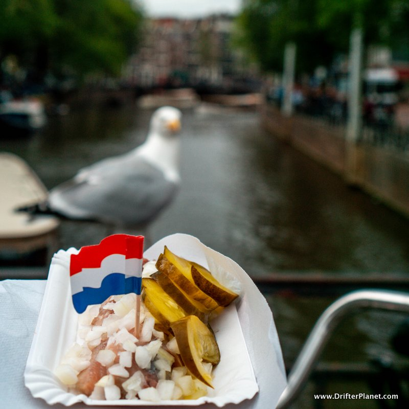Eating Dutch Herring in Amsterdam next to the Canals