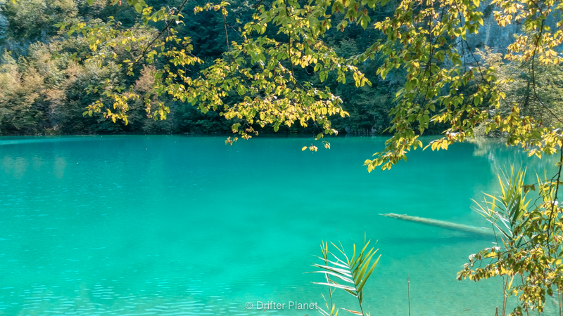 Crystal Clear Water - Plitvice Lakes Croatia