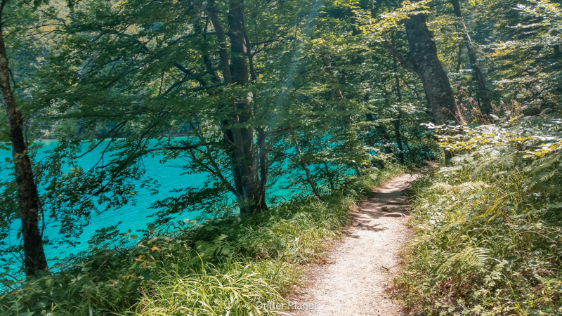 Empty walking trail - route K in Plitvice Lakes national park