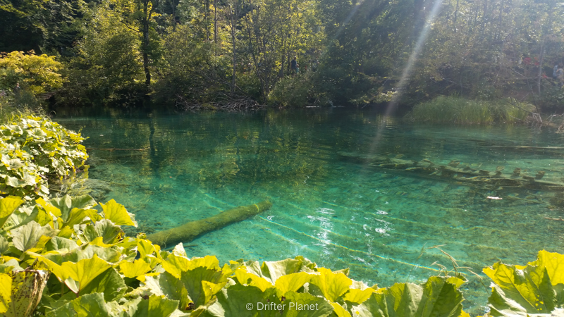 Stunning Clear Water - Plitvice Lakes, Croatia